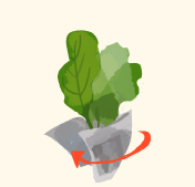 step2:葉もの野菜の保存方法