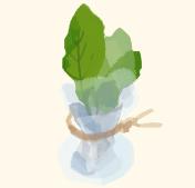 step3:葉もの野菜の保存方法