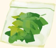 葉野菜の冷凍保存方法
